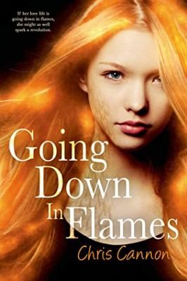 Going Down in Flames (Book 1)