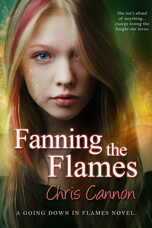 Fanning the Flames(Going Down In Flames Book 4)