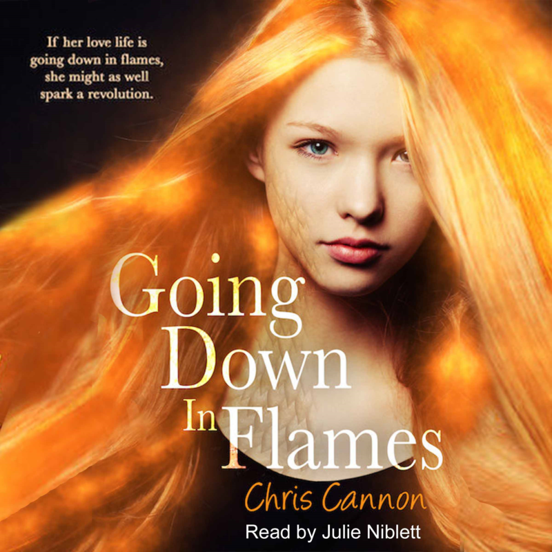 Going Down In Flames AUDIO BOOK